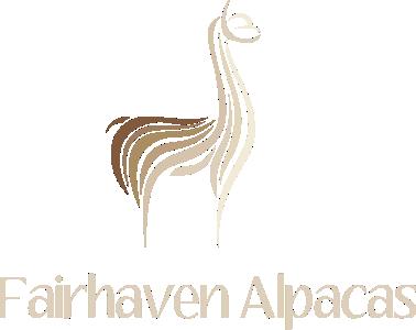 Fairhaven Alpacas
